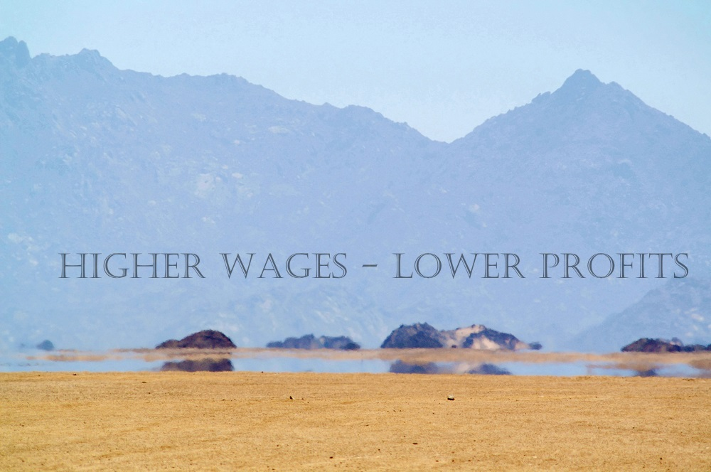 The Market's Mirage of Higher Wages