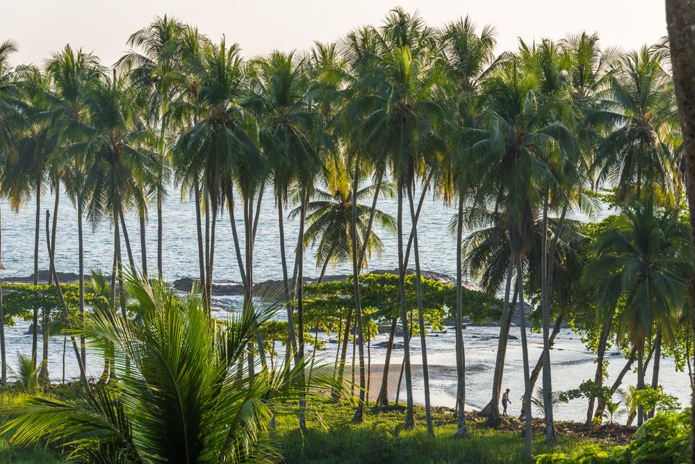 Costa Rica: Central America's Hidden Gem