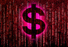 Decoding the Financial Collapse