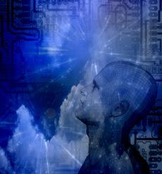 Do Robots Dream of Wealth