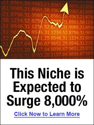 300x400_NicheSurge8000_sidebar