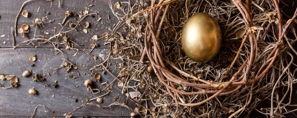 With careful planning and a little knowledge, we can take advantage of a few techniques to build a nest egg to protect against the next financial collapse…