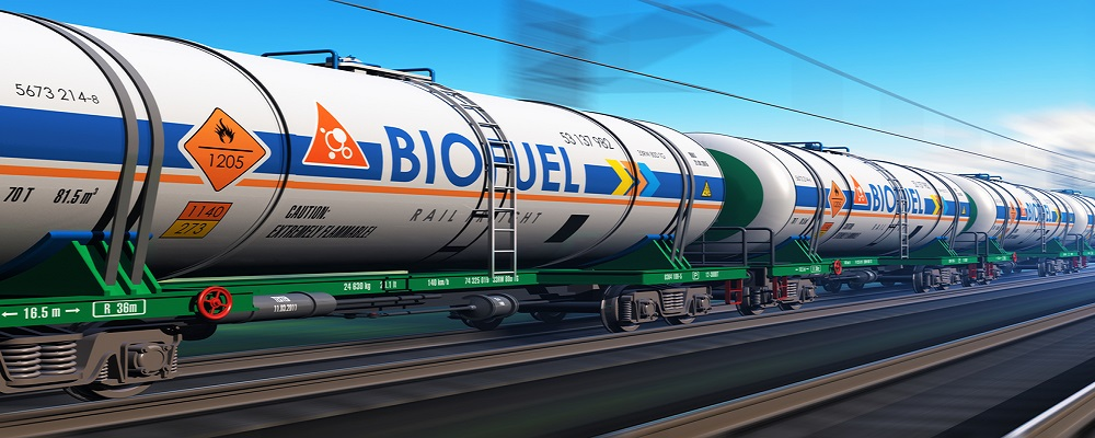 Why Biofuel Production is Short