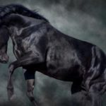 """Today, I'm going to suggest a """"dark horse"""" for a potentially bullish tech opportunity for 2019 … though, it may take a while for this position to fully develop."""