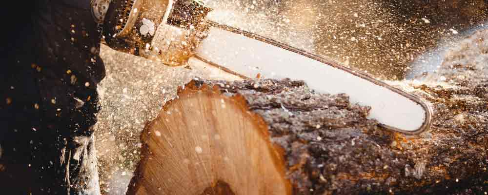 One story some analysts are missing is the price of lumber. After surging to a new all-time high in May, futures prices fell 48% by the end of the year.