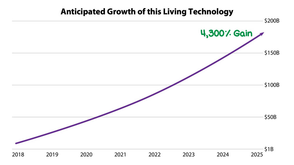 Projected AI Growth 2025