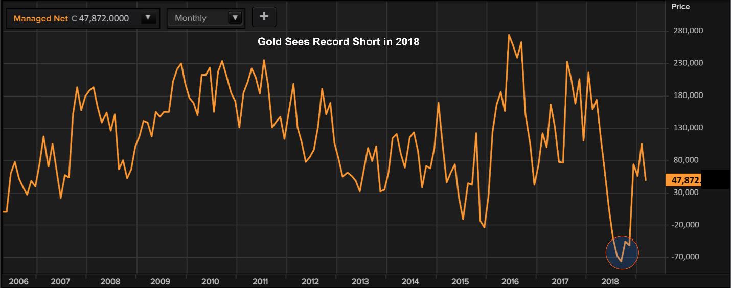 Gold Record Short 2018
