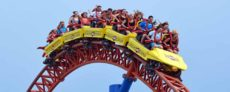 Financial writers like me often use the metaphor of a roller coaster to describe the stock market. That's especially true at times of market volatility.