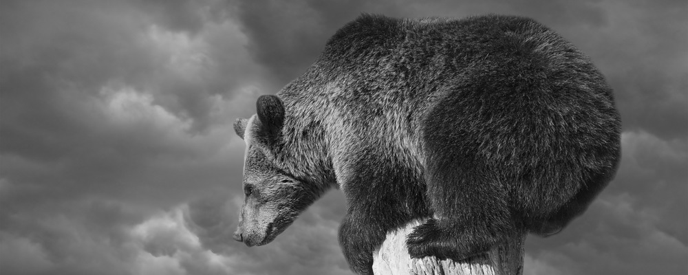 Small Caps Are Set to Lead the Next Bear Market
