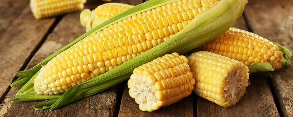 Corn Just Hit Rock Bottom. Get Set to Profit