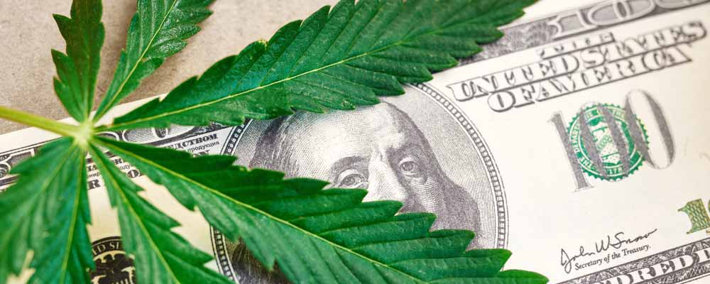 The Smart Money Is in Pot Stocks