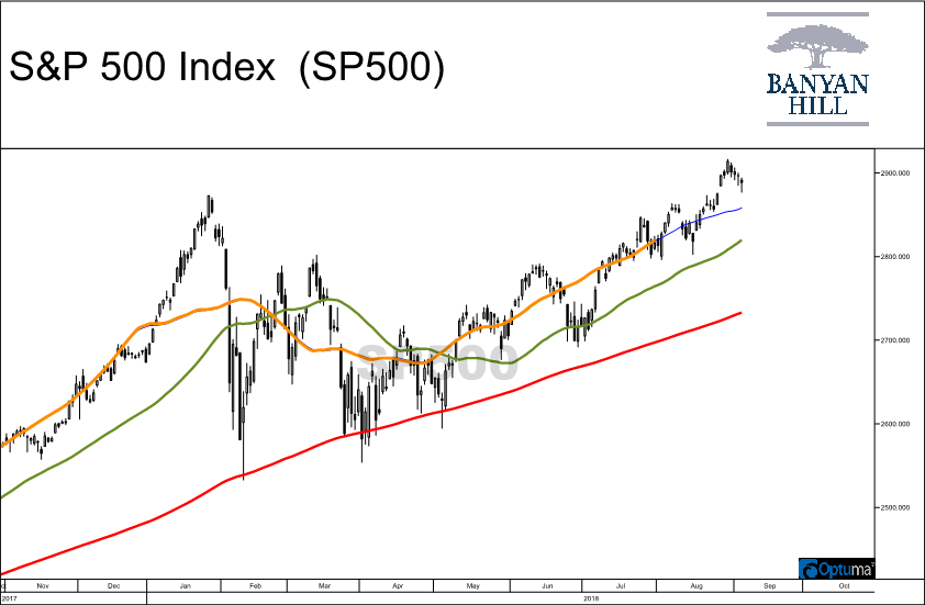 Many of you have asked why I've been bullish all year despite dire warnings from market watchers. Well, it all comes down to a chart that I look at daily.